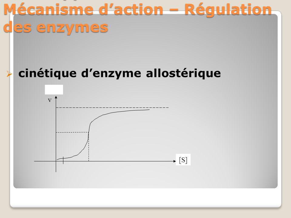 VII- Support structural- Mécanisme d'action – Régulation des enzymes  cinétique d'enzyme allostérique v [S]