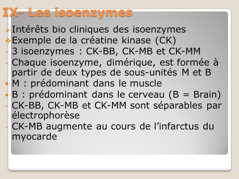 IX- Les isoenzymes  Intérêts bio cliniques des isoenzymes  Exemple de la créatine kinase (CK) - 3 isoenzymes : CK-BB, CK-MB et CK-MM - Chaque isoenzyme, dimérique, est formée à partir de deux types de sous-unités M et B M : prédominant dans le muscle B : prédominant dans le cerveau (B = Brain) - CK-BB, CK-MB et CK-MM sont séparables par électrophorèse - CK-MB augmente au cours de l'infarctus du myocarde