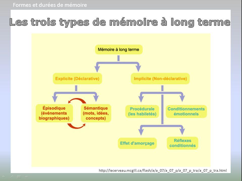 http://lecerveau.mcgill.ca/flash/a/a_07/a_07_p/a_07_p_tra/a_07_p_tra.html Formes et durées de mémoire