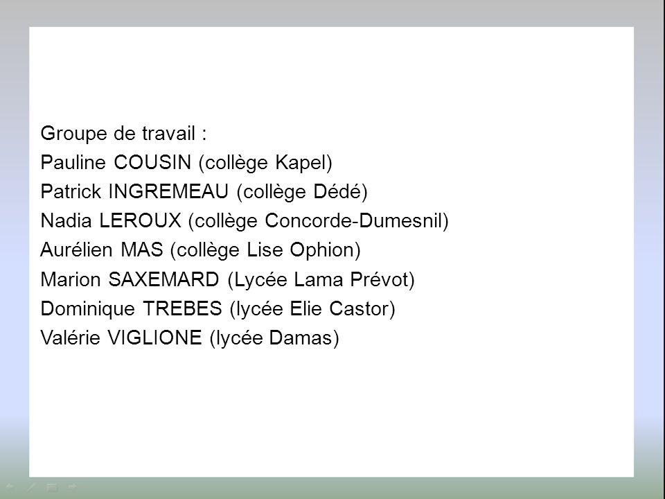 Groupe de travail : Pauline COUSIN (collège Kapel) Patrick INGREMEAU (collège Dédé) Nadia LEROUX (collège Concorde-Dumesnil) Aurélien MAS (collège Lis