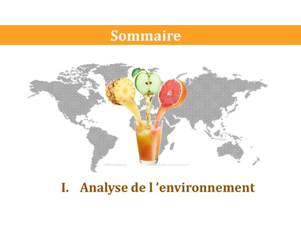 Sommaire I.Analyse de l 'environnement