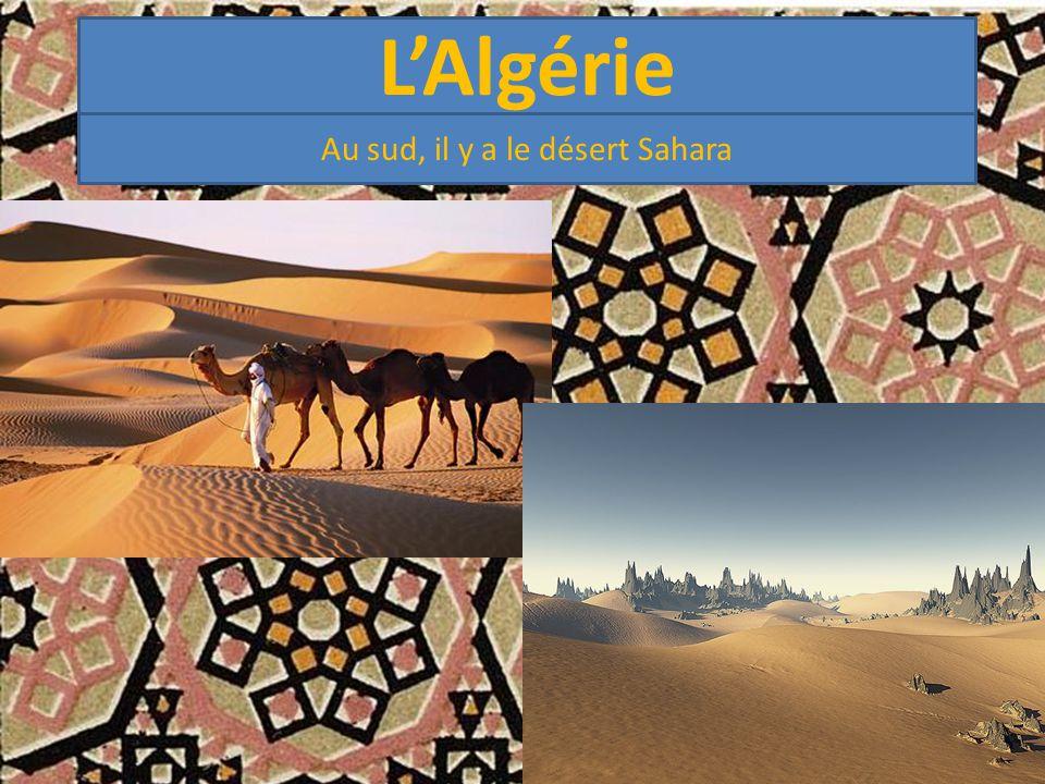 L'Algérie Au sud, il y a le désert Sahara