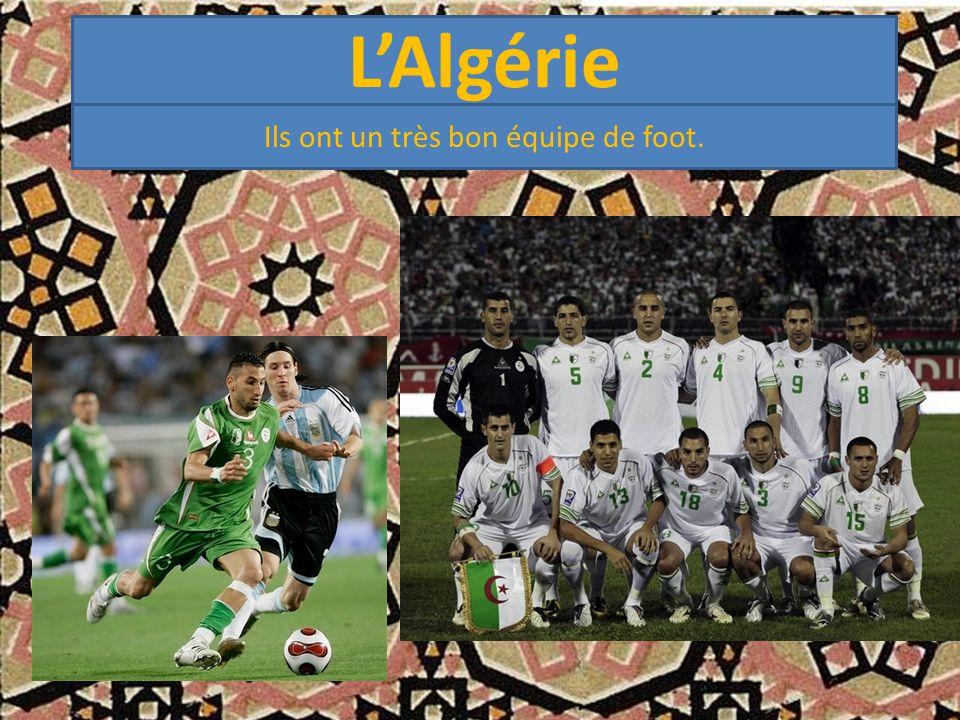 L'Algérie Ils ont un très bon équipe de foot.