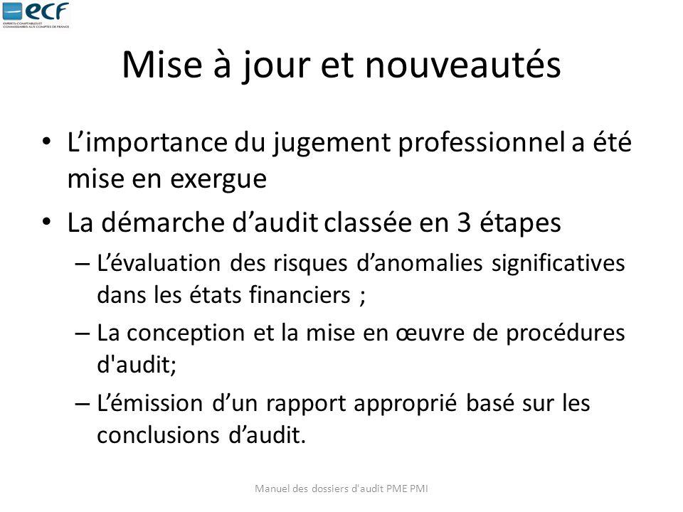 Mise à jour et nouveautés L'importance du jugement professionnel a été mise en exergue La démarche d'audit classée en 3 étapes – L'évaluation des risq