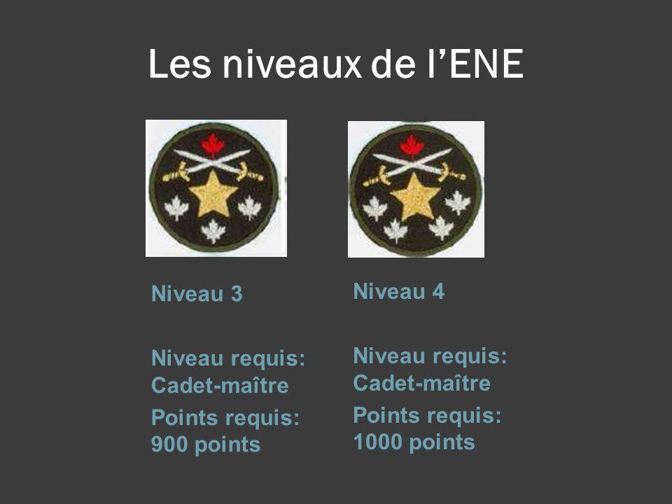 Les niveaux de l'ENE Niveau 3 Niveau requis: Cadet-maître Points requis: 900 points Niveau 4 Niveau requis: Cadet-maître Points requis: 1000 points