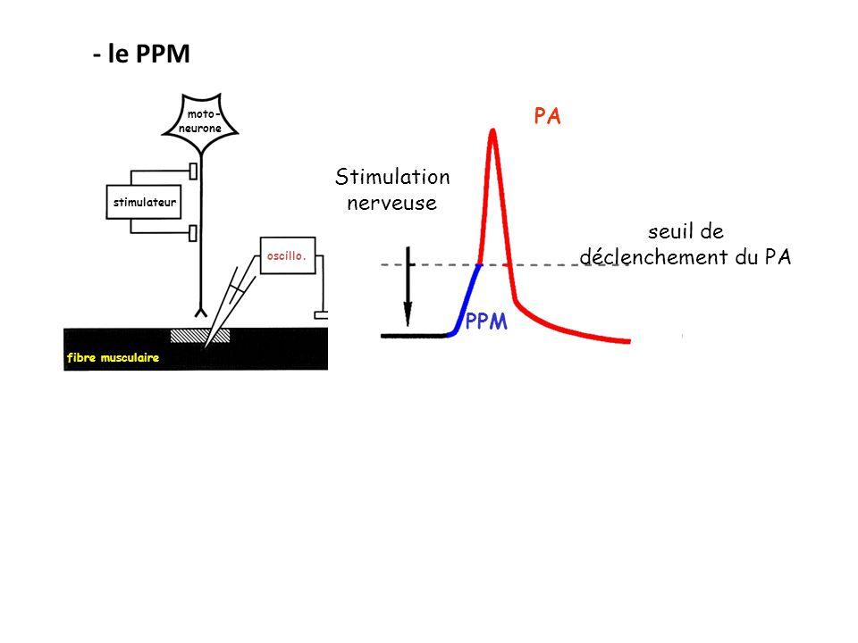 stimulateur fibre musculaire oscillo. moto- neurone Stimulation nerveuse seuil de déclenchement du PA PA PPM - le PPM