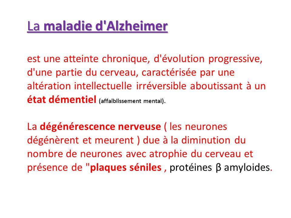 La maladie d'Alzheimer est une atteinte chronique, d'évolution progressive, d'une partie du cerveau, caractérisée par une altération intellectuelle ir