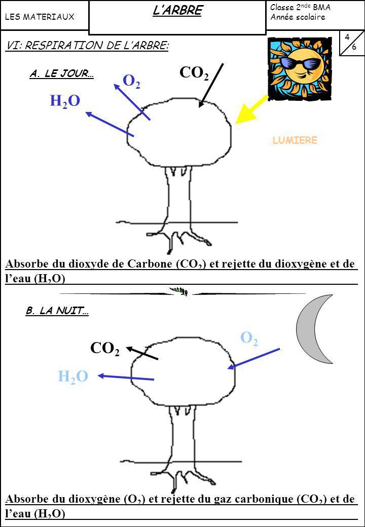 Réaction chimique Eau + substances minérales solubles Substances solubles Décomposition (micro- organismes, champignons) CO 2 O2O2 H2OH2O Litière Humu