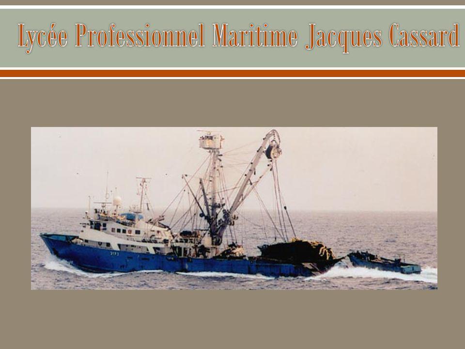 Filière « marin du commerce »  Baccalauréat professionnel en 3 ans formant à terme des marins qui auront des fonctions au pont lors de croisières, de voyages transocéaniques, de liaisons maritimes quotidiennes …