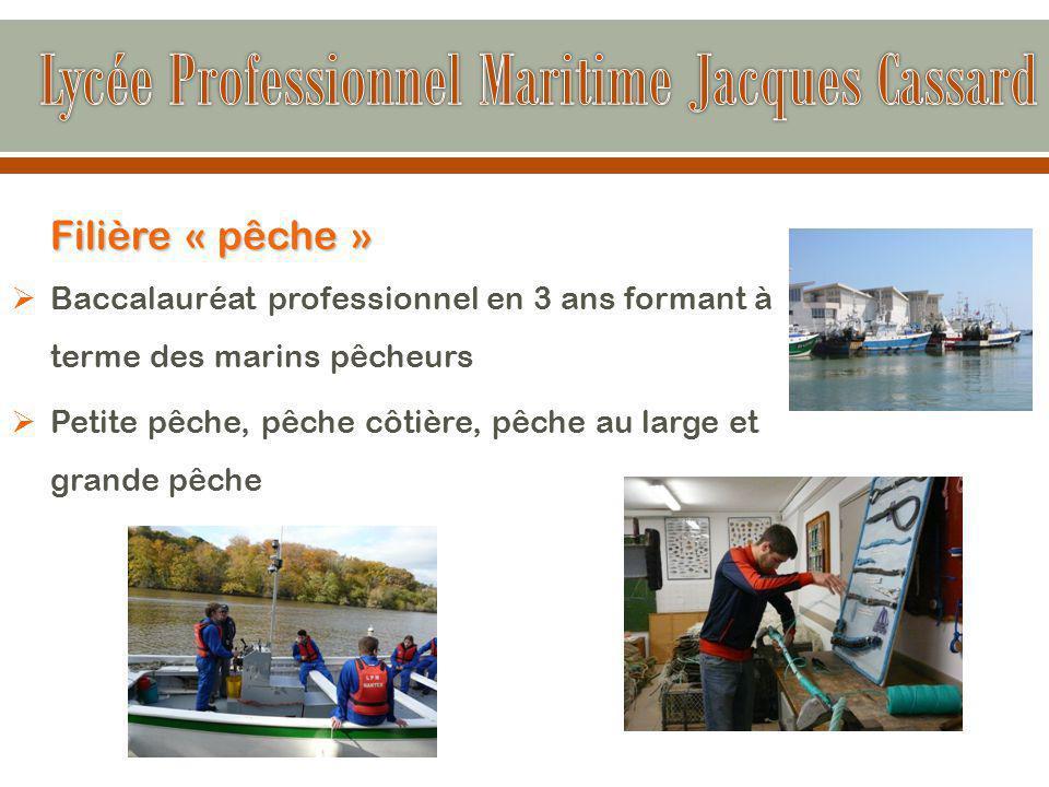 Filière « pêche »  Baccalauréat professionnel en 3 ans formant à terme des marins pêcheurs  Petite pêche, pêche côtière, pêche au large et grande pêche