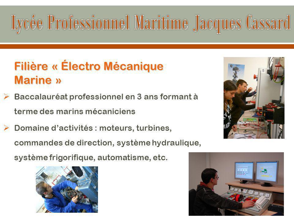 Filière « Électro Mécanique Marine »  Baccalauréat professionnel en 3 ans formant à terme des marins mécaniciens  Domaine d'activités : moteurs, turbines, commandes de direction, système hydraulique, système frigorifique, automatisme, etc.