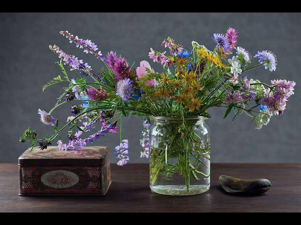 U ne fleur est écrite au bout de chaque doigt et le bout du chemin est une fleur qui marche avec toi.