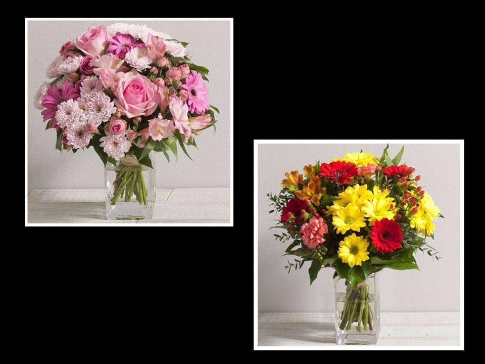 Le vrai bonheur est celui que l on cultive journée par journée comme les fleurs. Livette Laroche
