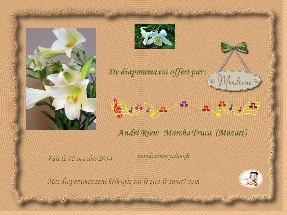 De diaporama est offert par : André Rieu: Marcha Truca (Mozart) Fait le 12 octobre 2014 mondoune@yahoo.fr Mes diaporamas sont hébergés sur le site de souri7.com