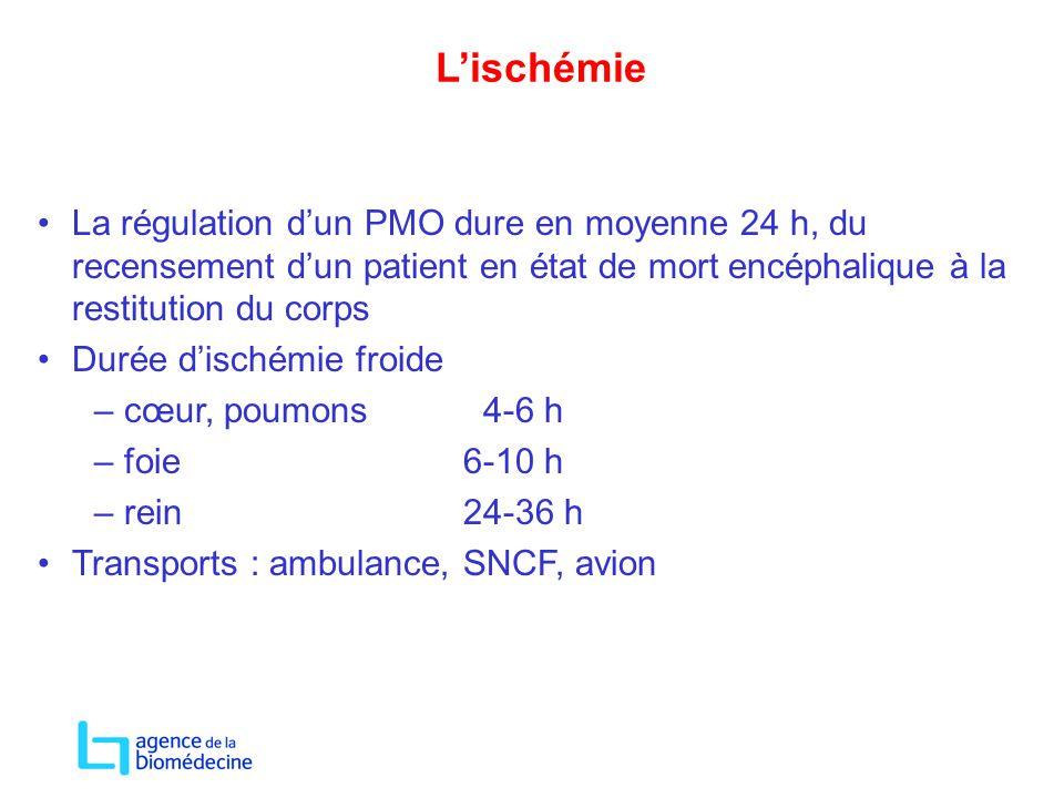 L'ischémie La régulation d'un PMO dure en moyenne 24 h, du recensement d'un patient en état de mort encéphalique à la restitution du corps Durée d'isc