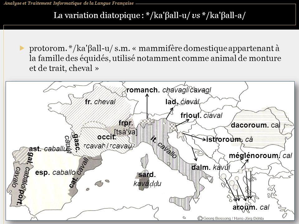 Analyse et Traitement Informatique de la Langue Française La variation diatopique : */ka'βall ‑ u/ vs */ka'βall ‑ a/  protorom. */ka'βall ‑ u/ s.m. «
