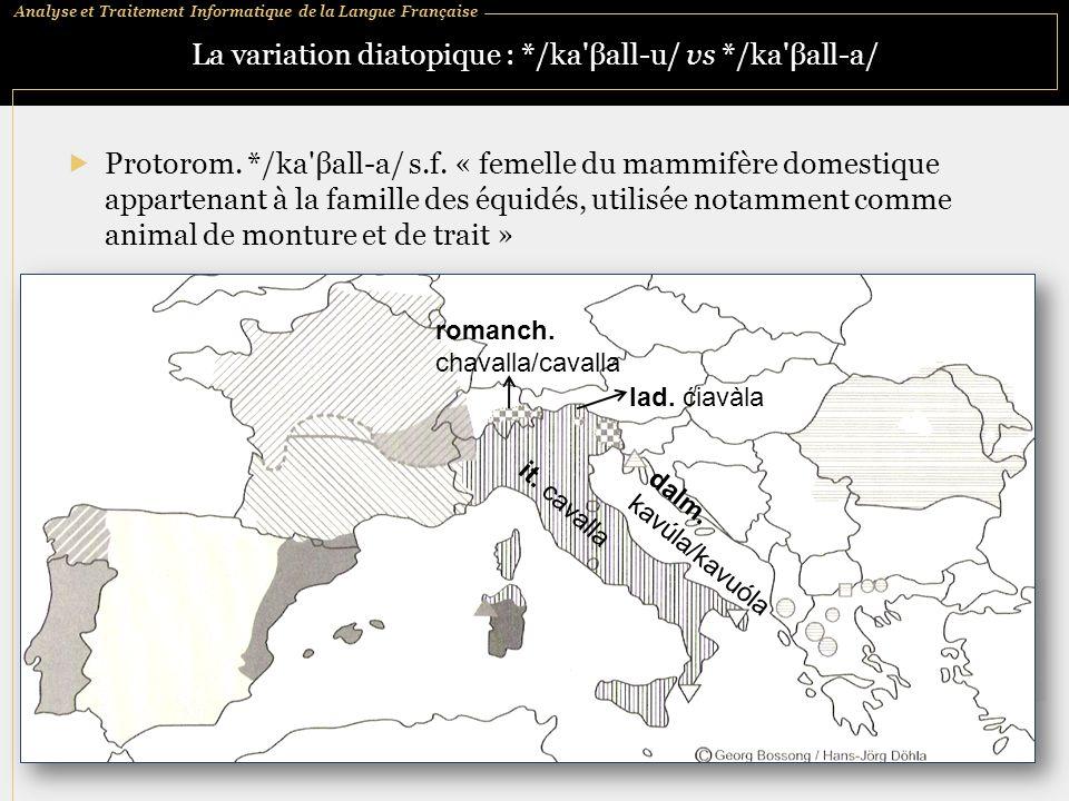 Analyse et Traitement Informatique de la Langue Française La variation diatopique : */ka'βall ‑ u/ vs */ka'βall ‑ a/  Protorom. */ka'βall ‑ a/ s.f. «