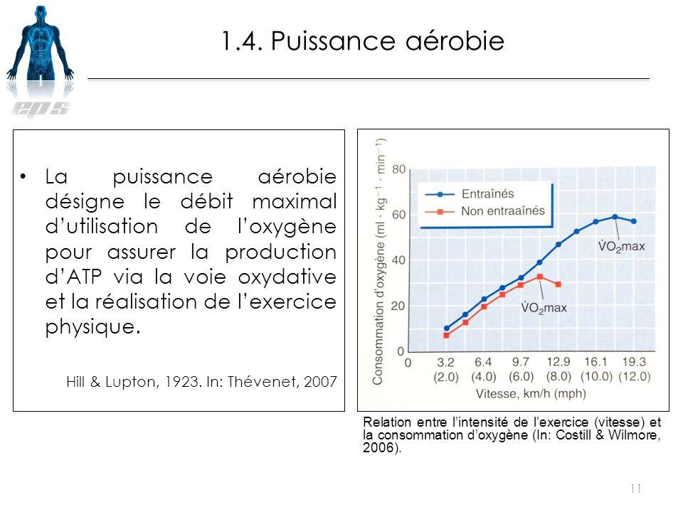 La puissance aérobie désigne le débit maximal d'utilisation de l'oxygène pour assurer la production d'ATP via la voie oxydative et la réalisation de l