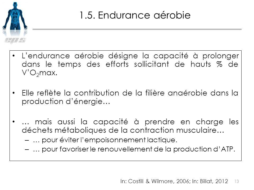 L'endurance aérobie désigne la capacité à prolonger dans le temps des efforts sollicitant de hauts % de V'O 2 max. Elle reflète la contribution de la