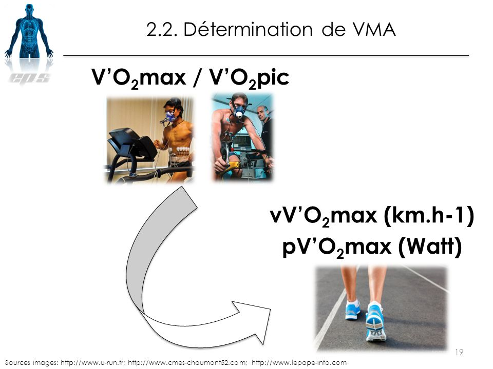 vV'O 2 max (km.h-1) pV'O 2 max (Watt) 19 Sources images: http://www.u-run.fr; http://www.cmes-chaumont52.com; http://www.lepape-info.com V'O 2 max / V