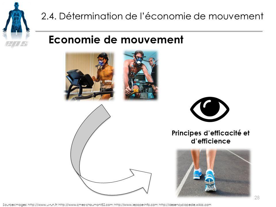 28 Sources images: http://www.u-run.fr; http://www.cmes-chaumont52.com; http://www.lepape-info.com; http://desencyclopedie.wikia.com Economie de mouve