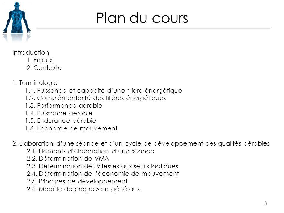 Introduction 1. Enjeux 2. Contexte 1. Terminologie 1.1. Puissance et capacité d'une filière énergétique 1.2. Complémentarité des filières énergétiques