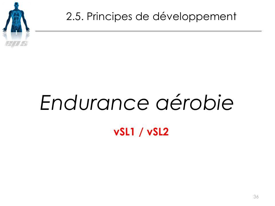 Endurance aérobie 36 2.5. Principes de développement vSL1 / vSL2