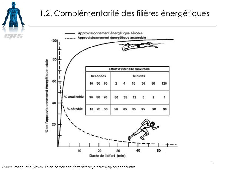 Source image: http://www.ulb.ac.be/sciences/intra/inforsc_archives/nrj/carpentier.htm 9 1.2. Complémentarité des filières énergétiques
