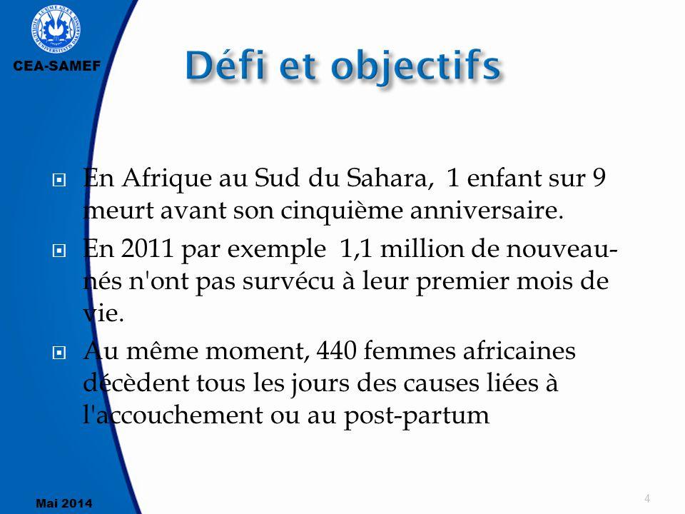 CEA-SAMEF Mai 2014  En Afrique au Sud du Sahara, 1 enfant sur 9 meurt avant son cinquième anniversaire.  En 2011 par exemple 1,1 million de nouveau-