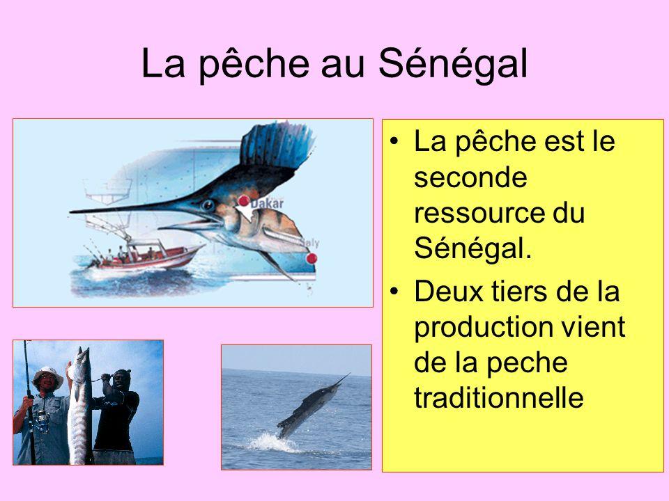 La pêche au Sénégal La pêche est le seconde ressource du Sénégal. Deux tiers de la production vient de la peche traditionnelle