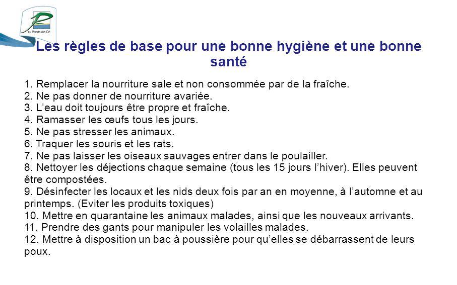 Les règles de base pour une bonne hygiène et une bonne santé 1.
