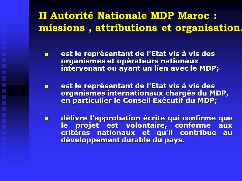 Une activité de réglementation pour fixer les règles et procédures d'évaluation et d'approbation des projets MDP : activité obligatoire; Une activité promotionnelle centrée sur le renforcement des capacités et sur le marketing.