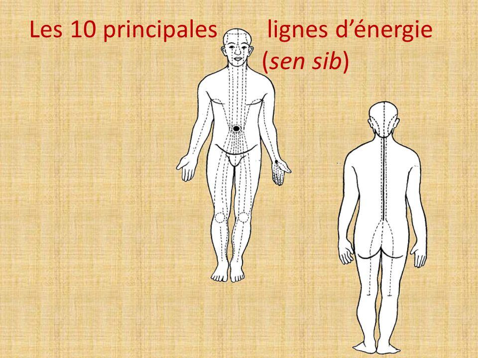 Les 10 principales lignes d'énergie (sen sib)