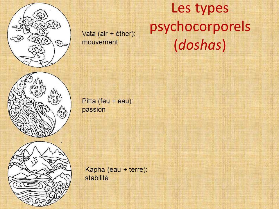 Les types psychocorporels (doshas) Vata (air + éther): mouvement Pitta (feu + eau): passion Kapha (eau + terre): stabilité