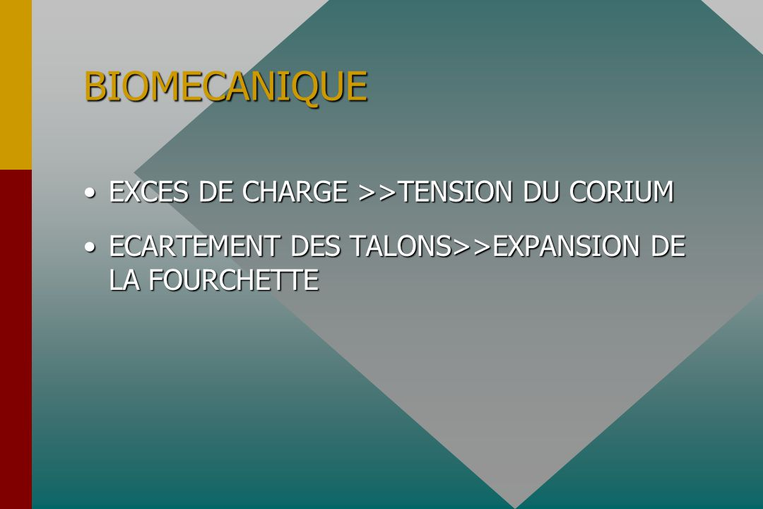 BIOMECANIQUE EXCES DE CHARGE >>TENSION DU CORIUMEXCES DE CHARGE >>TENSION DU CORIUM ECARTEMENT DES TALONS>>EXPANSION DE LA FOURCHETTEECARTEMENT DES TALONS>>EXPANSION DE LA FOURCHETTE