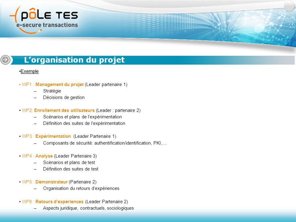 ExempleExemple WP1 : Management du projet (Leader partenaire 1) –Stratégie –Décisions de gestion WP2: Enrollement des utilisateurs (Leader : partenair