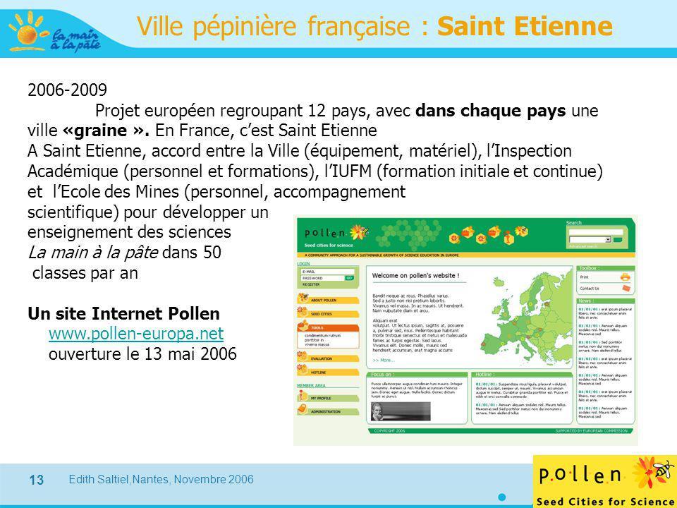 Edith Saltiel,Nantes, Novembre 2006 13 Ville pépinière française : Saint Etienne 2006-2009 Projet européen regroupant 12 pays, avec dans chaque pays u