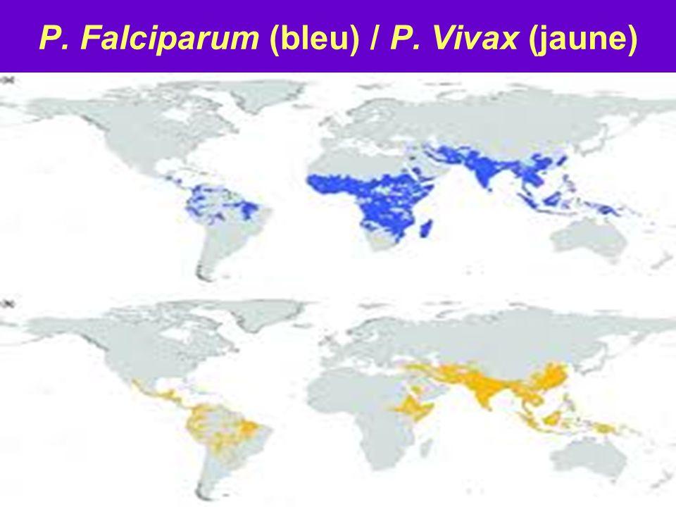 Incidence Paludisme Monde