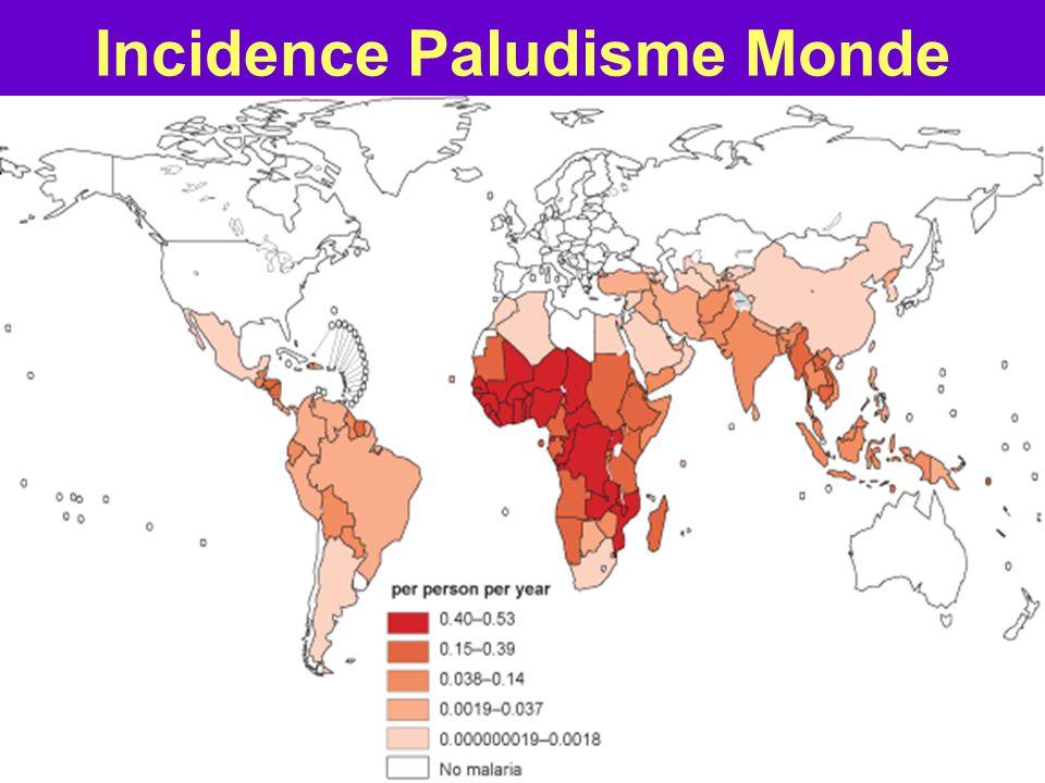 Convergence géographique Prévalence : 34 millions Incidence : 2, 5 millions / an Mortalité : 1 500 000 / an –Afrique sub-Sahara : 60% cas –Enfants <15 ans : 380 000 (RAPPORT ONUSIDA 2012) Incidence : 216 millions / an –Afrique sub-saharienne : 80 % Mortalité : 655 000 / an –Baisse mortalité 33%: 2000-2011 –Afrique Sub-Sahara : 90 % cas –Enfants < 5 ans : 85 % cas –20 % létalité infantile - Monde –1décès d'enfant / minute -Afrique (RAPPORT OMS PALUDISME 2011) VIH/SIDAPALUDISME