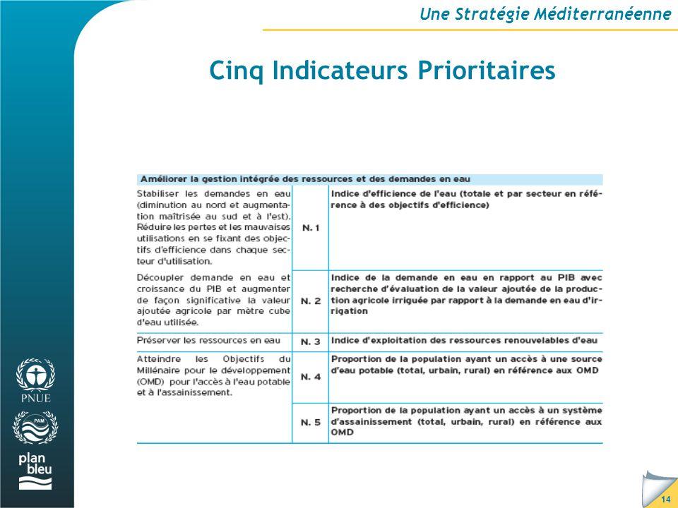 14 Cinq Indicateurs Prioritaires Une Stratégie Méditerranéenne