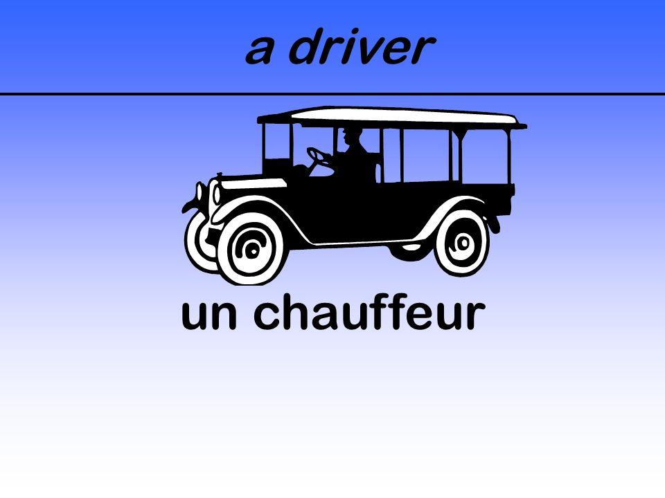 a driver un chauffeur