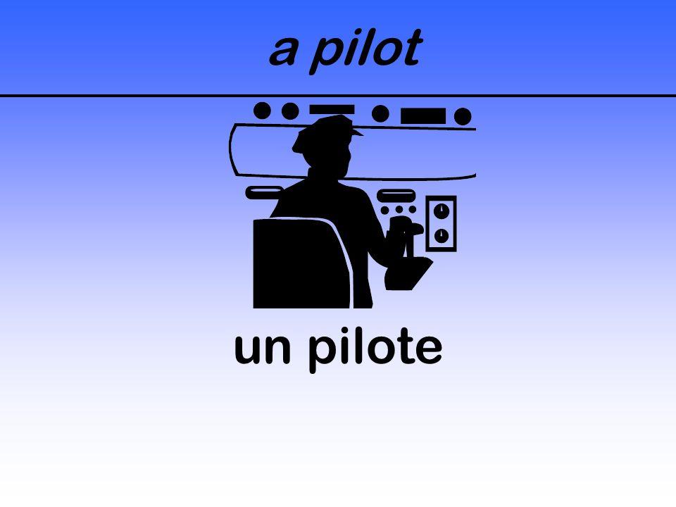 a pilot un pilote