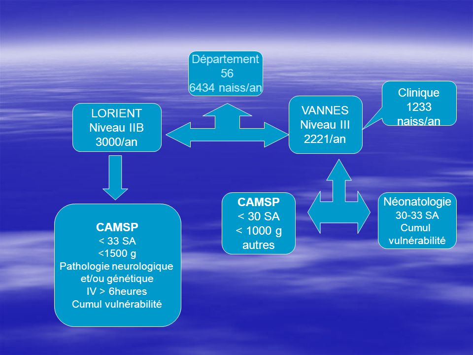 Département 56 6434 naiss/an LORIENT Niveau IIB 3000/an VANNES Niveau III 2221/an CAMSP < 33 SA <1500 g Pathologie neurologique et/ou génétique IV > 6