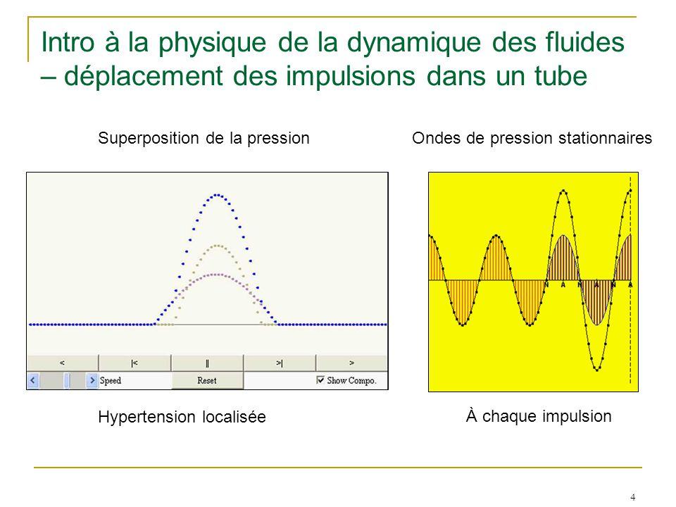 4 Intro à la physique de la dynamique des fluides – déplacement des impulsions dans un tube Superposition de la pressionOndes de pression stationnaires Hypertension localisée À chaque impulsion