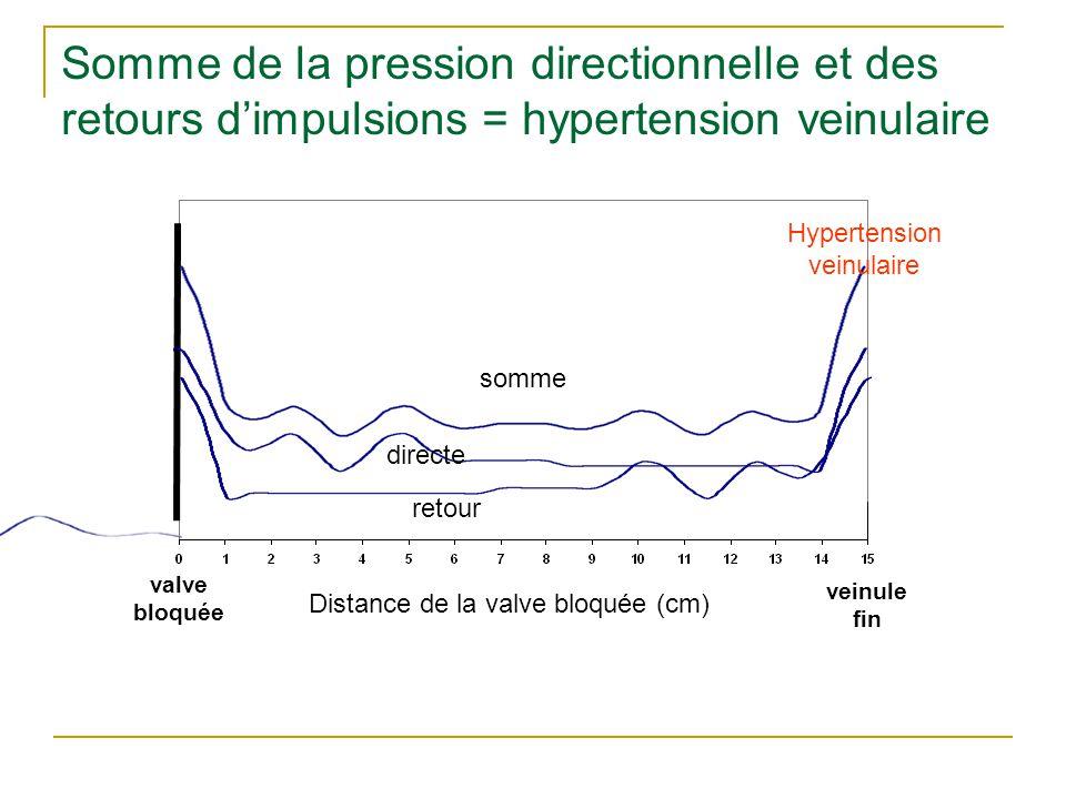 Somme de la pression directionnelle et des retours d'impulsions = hypertension veinulaire valve bloquée veinule fin Distance de la valve bloquée (cm)