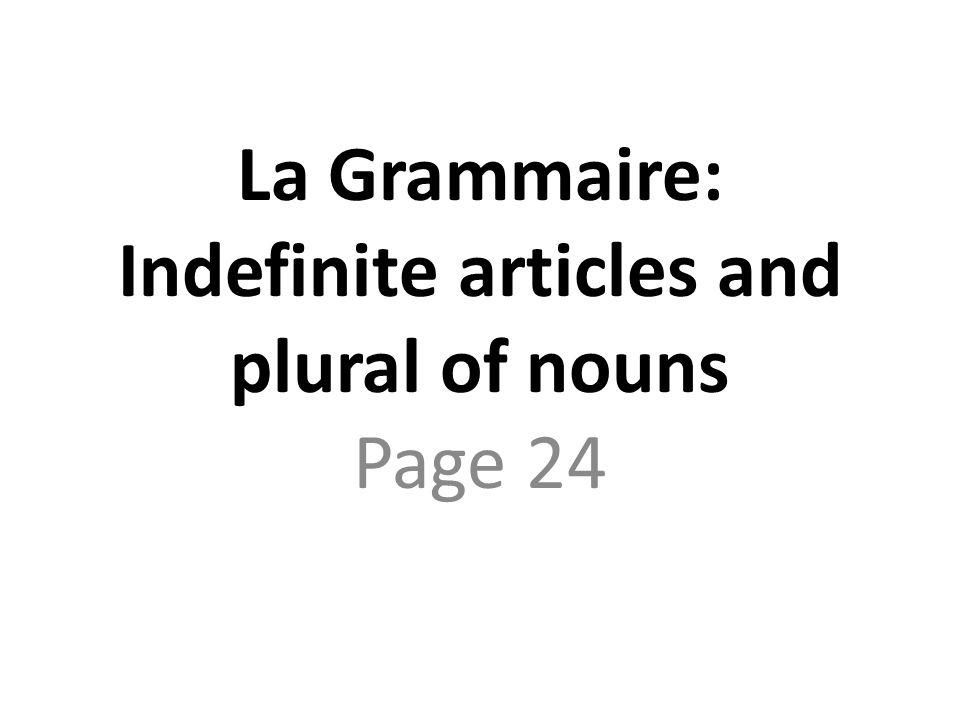 La Grammaire: Indefinite articles and plural of nouns Page 24