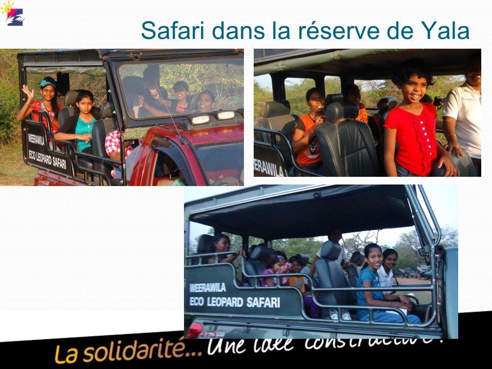 Safari dans la réserve de Yala