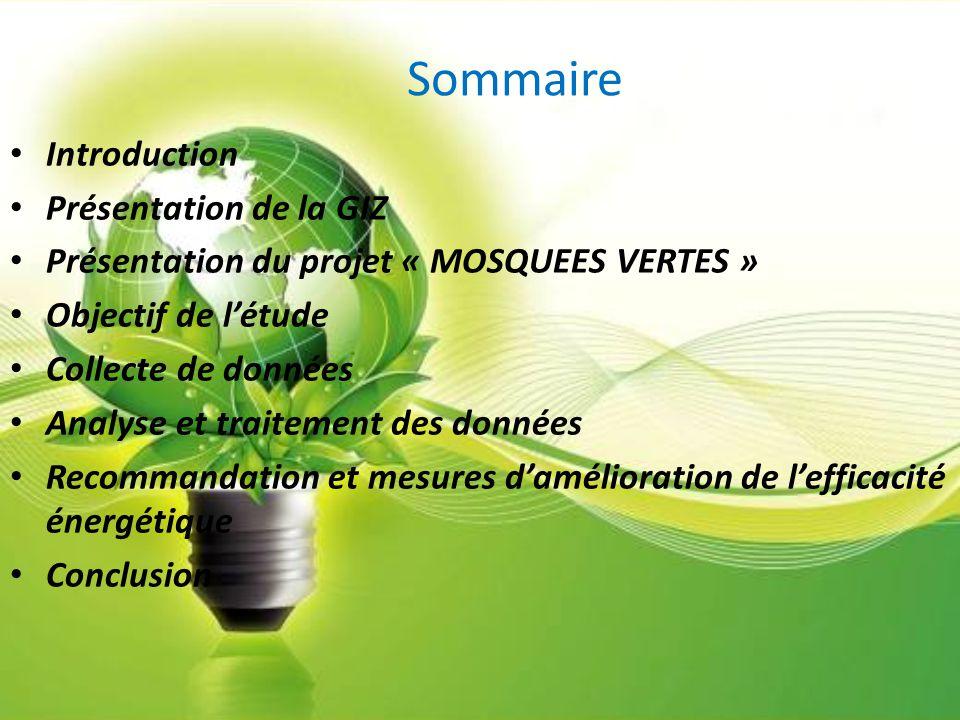 Introduction L'objectif de ce stage est d'avoir une expérience sur la politique des énergies renouvelables et de l'efficacité énergétique au Maroc et particulièrement l'efficacité énergétique dans les mosquées.
