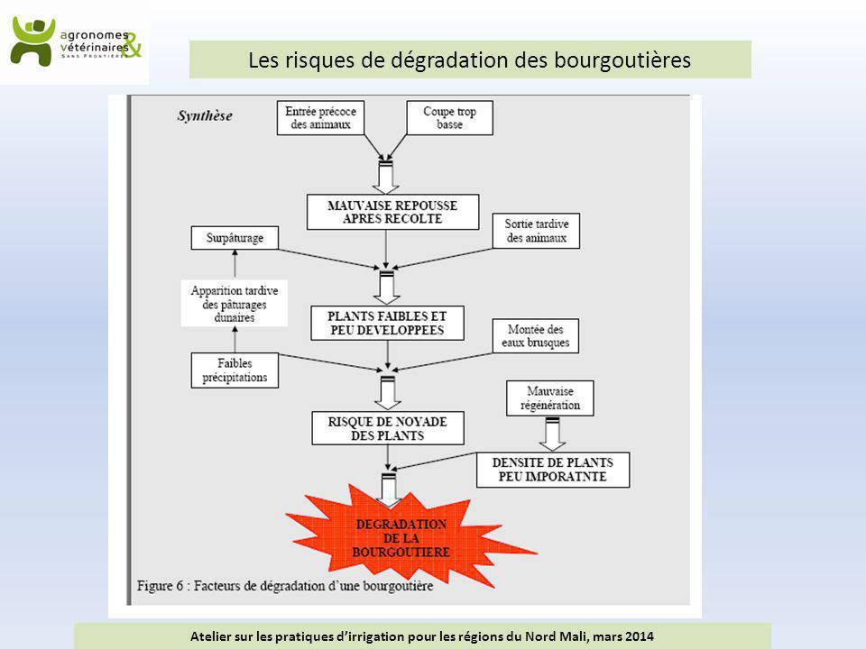 Les risques de dégradation des bourgoutières Atelier sur les pratiques d'irrigation pour les régions du Nord Mali, mars 2014