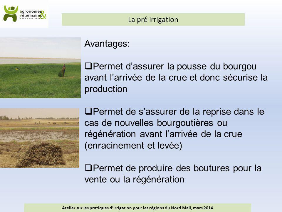 La pré irrigation Atelier sur les pratiques d'irrigation pour les régions du Nord Mali, mars 2014 Avantages:  Permet d'assurer la pousse du bourgou a